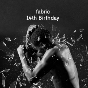 fabric_14th_Birthday